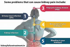 Diagram Of Kidney Pain