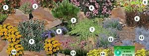 Plantes Vivaces Autour D Un Bassin : creer une rocaille rocaille de fleurs rocaille plantes vivaces ~ Melissatoandfro.com Idées de Décoration
