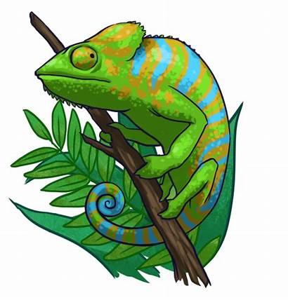 Chameleon Bechler Phd Thank Brian Barry Casey