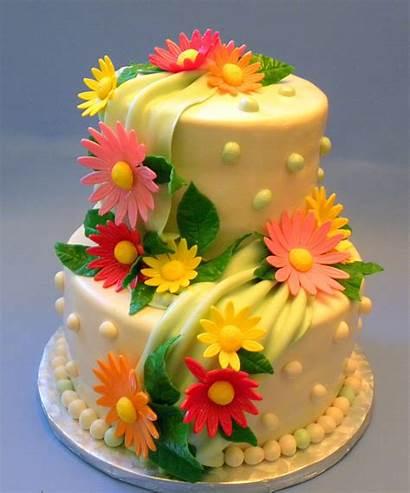 Birthday Cake Cakes Flowers Flower Decoration Decorating