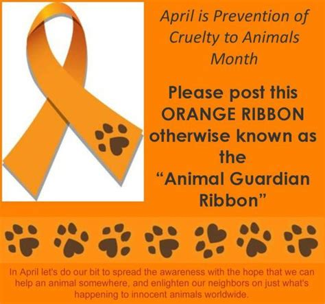 dr rex april animal cruelty prevention month animal