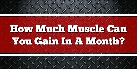How Much Muscle Can You Gain In A Month?  Killermusclecom. Setting Up A Holding Company. Senior Database Developer Hills Tire Ohsweken. Money Market Mutual Fund Rates. California Trust Attorney Fatty Tumor Surgery. Alcohol Sports Performance Basic Satellite Tv. Portable Tradeshow Displays Us Mailing House. The Square Credit Card Reader Reviews. Default Verizon Voicemail Password