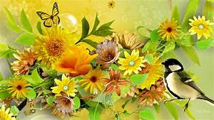 Spring Collage Full HD Wallpaper and Background Image ...