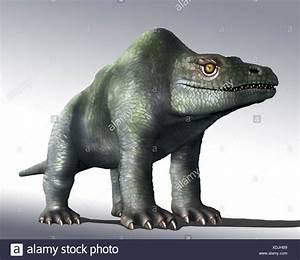 Dinosaurs The Jurassic Period Stock Photos U0026 Dinosaurs The