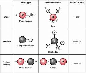 Image Result For Polar Vs Nonpolar Molecules