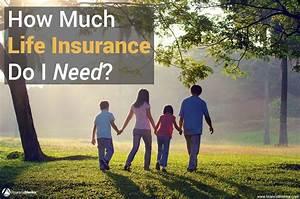 Balloon Loan Calculator Life Insurance Calculator How Much Do I Need