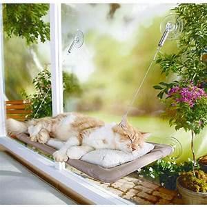 Kochen Für Katzen : design katzenm bel f r brave katzen ~ Lizthompson.info Haus und Dekorationen