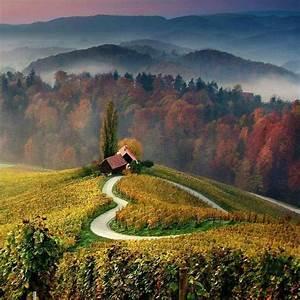 Heart shaped road, Slovenia