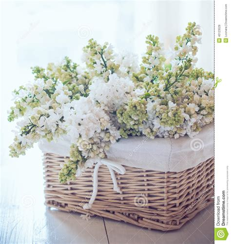 vintage chic home decor white lilac flowers in a wicker basket stock photo image