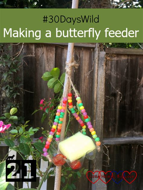 dayswild making  butterfly feeder  hearts