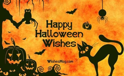 halloween wishes messages  quotes wishesmsg