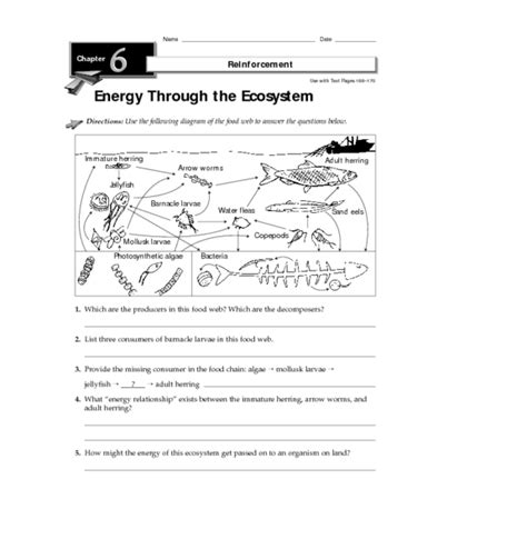 4th Grade » 4th Grade Ecosystem Worksheets  Printable Worksheets Guide For Children And Parents