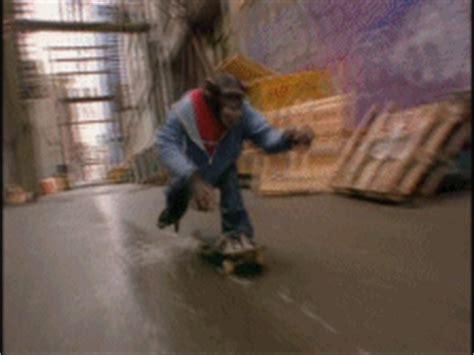 Monkey Skateboard GIF - Find & Share on GIPHY