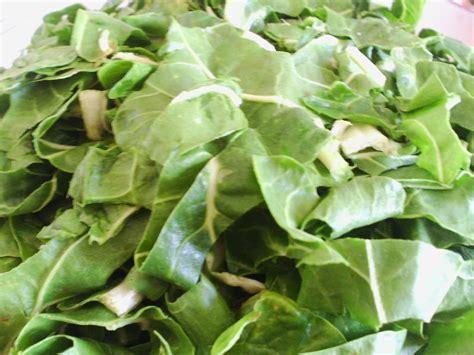 cuisiner le vert des blettes gratin à l 39 italienne pâte et vert de blettes les menus