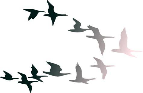Birds In Flight Clip Art At Clker.com
