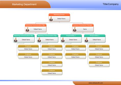 market department org chart  market department org