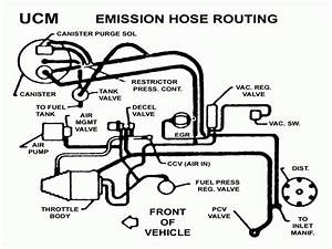 1995 Chevy Camaro Fuel Lines Diagram