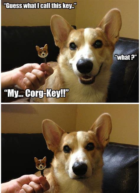 terriblewonderful dog puns  torture  friends