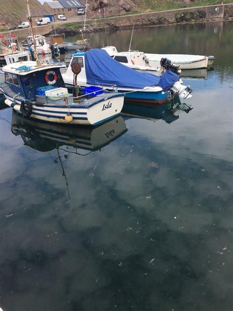 boat  buckie moray gumtree