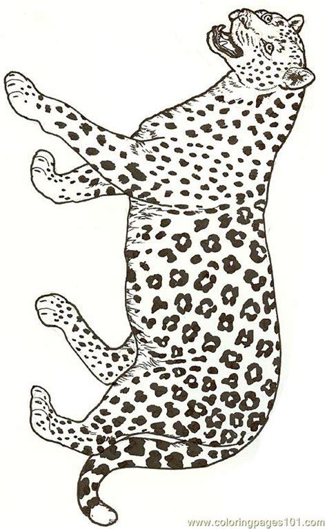 leopard coloring page  jaguar coloring pages coloringpagescom