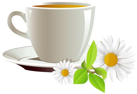 Cup Of Coffee And Daisies Png Clipart Siphon Coffee Maker How Does It Work San Francisco Bay Holiday Blend 2018 Hario Directions Tall Turkish Pot French 100 Single Serve Onecups Co. Lincoln Ca 95648 For Sale Cape Town