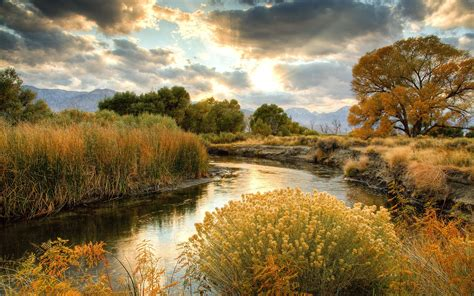 Autumn Scenery, Nature, Yellow Grass, River, Trees, Clouds