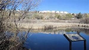 Reno Oxbow Nature Study Area - YouTube