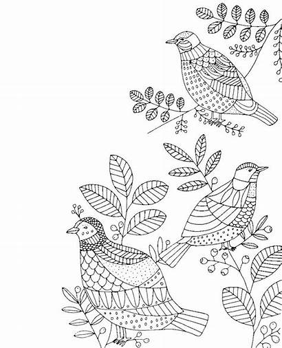 Colouring Nature Mindfulness Coloring Adults Books Inside