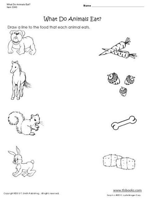 """what Do Animals Eat?"" Worksheet  Preschool Activities & Ideas  Pinterest Worksheets"