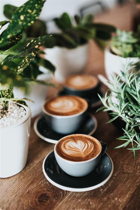 San luis potosí (spanish pronunciation: Coffee is for Closers | Access Capital
