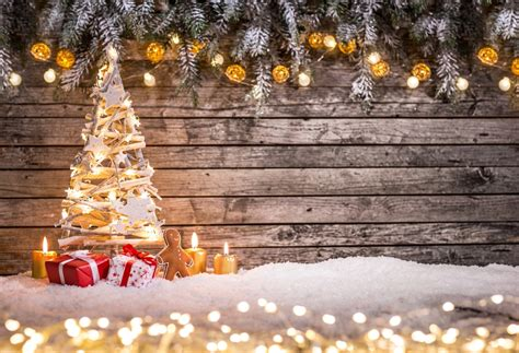 christmas tree photography background studio photo prop