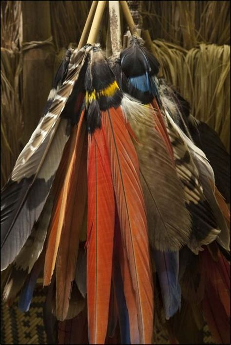 images  canoes  painted feathers