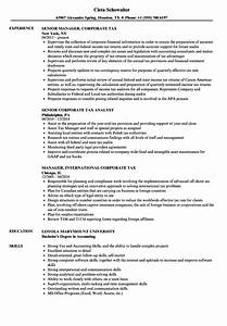 Sample Of Income Statements Corporate Tax Resume Samples Velvet Jobs