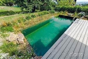 Roční náklady na bazén