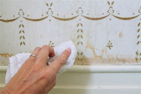 domestic science   remove water stains