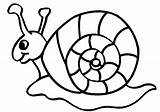 Snail Nature Coloring Printable Pages Easy sketch template