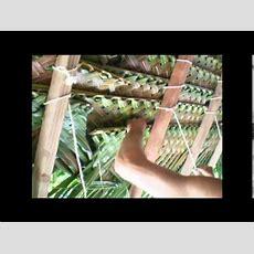 Tressage Feuilles De Cocotiers Youtube