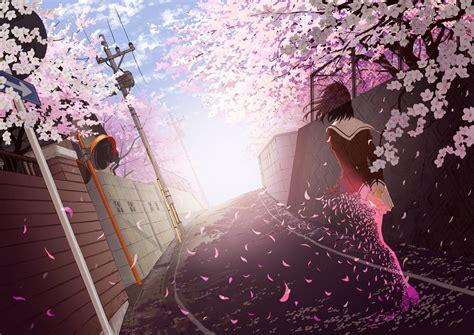 Anime Cherry Blossom Wallpaper - anime school cherry blossom wallpapers hd