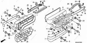 Honda Motorcycle 2006 Oem Parts Diagram For Cylinder Head