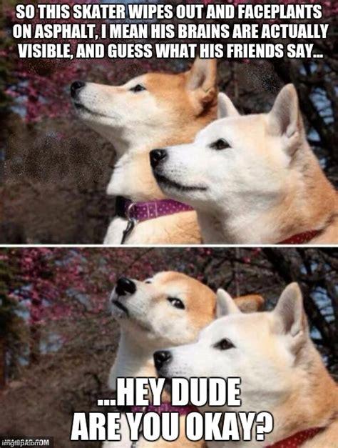 Shiba Inu Meme - shiba meme 28 images shiba inus are weird dogs thechive birthday doge meme www pixshark com