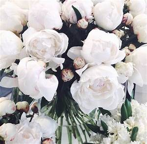 white, flowers, roses, tumblr - image #4134602 by ...