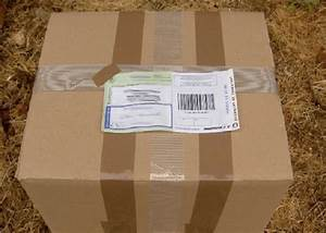 Envoie De Colis Par La Poste : 200 colis de la poste retrouv s ventr s dans un d p t ~ Medecine-chirurgie-esthetiques.com Avis de Voitures