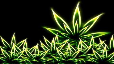 Marijuana Backgrounds
