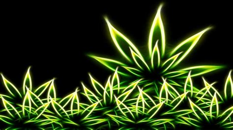 Marijuana Wallpaper Wallpapersafari