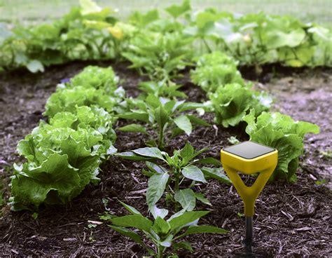Garden Sensor a solar powered soil sensor for serious gardeners wired