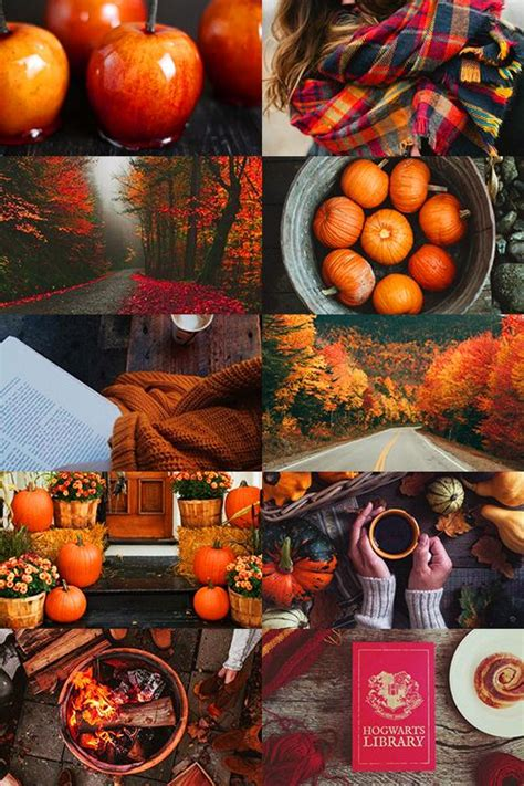 call  winter soldier autumn  aesthetic