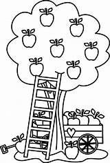 Apple Tree Coloring Pages Printable Colouring Fruit Under Sheets Kidsplaycolor sketch template