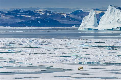 north pole  literally      uk nasa