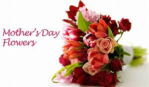 Mother's Day | Giftalove.com