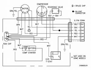 Ac Motor Speed Picture  Ac Motor Wiring Diagram
